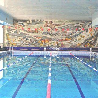 бассейн в домодедово