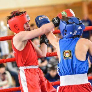 школа бокса в домодедово